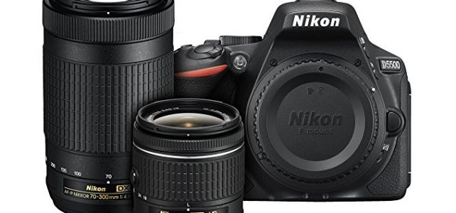 Nikon D5500 DX-format Digital SLR Dual Lens Kit w/ – Nikon AF-P DX NIKKOR 18-55mm f/3.5-5.6G VR & Nikon AF-P DX NIKKOR 70-300mm f/4.5-6.3G ED Lens Review